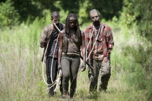 "Michonne and her ""pets"""